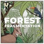 What is Forest Fragmentation?