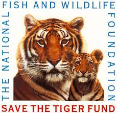 The National Fish and Wildlife Foundation Save Tiger Fund