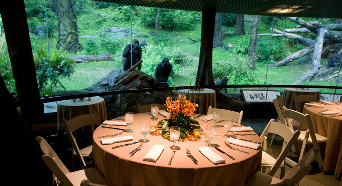 Bronx Zoo Corporate Events