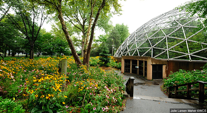 Ny Zoos And Aquarium Events Corporate Events Queens Zoo