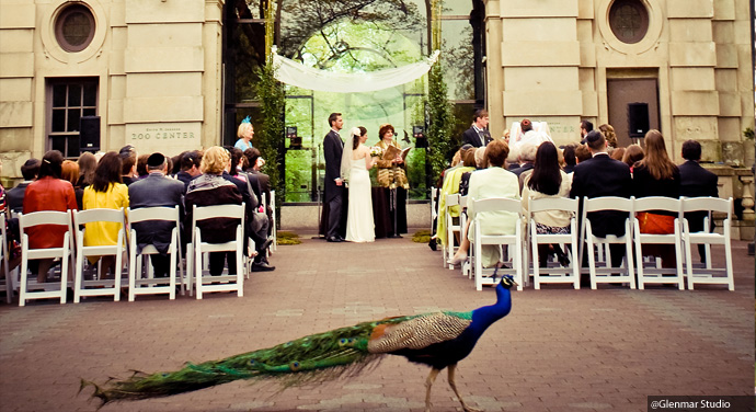 Bronx Zoo Ceremony and Events
