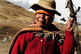 STUDY: To Save Wildlife from Extinction, Protect Indigenous Peoples' Lands
