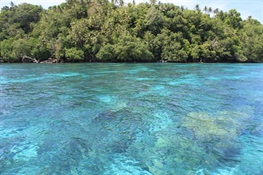 Papua New Guinea Commits to New Marine Protected Area