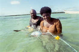 New Study Addresses Gender Inequality in Fisheries