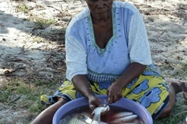 Fisheries Sustainability Linked to Gender Roles Among Traders