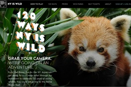 WCS Celebrates 120 Years with City-Wide Photo Safari #NYisWILD