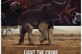 FIGHT THE CRIME: WCS Kicks off Third Phase of 96 Elephants Campaign