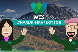 News From WCS Chile: Members needed to help preserve Karukinka -- the biggest protected area on the island of  Tierra del Fuego